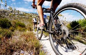 Mountainbike Training: Mit diesen Grundlagen meistern Sie die erste Einheit