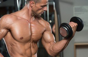 sofimo-biceps-trizeps