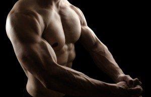 5x5-training-muskelmasse