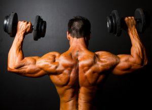 Double Bizeps Rücken