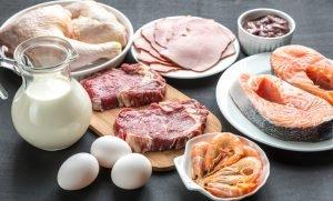 Proteine Eiweiß Ernährung
