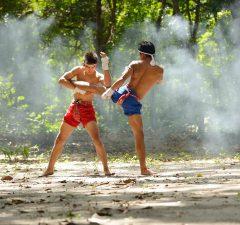 Muay-Thai-Ratgeber