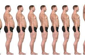 Fettabbau-Muskelaufbau-Ratgeber