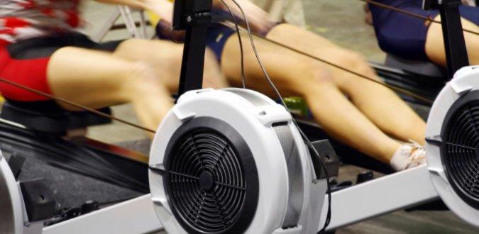 Rudern - Rückentraining