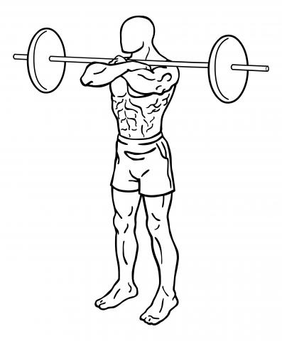 Oberschenkel Übungen - Front-Squat / Frontkniebeuge - Start