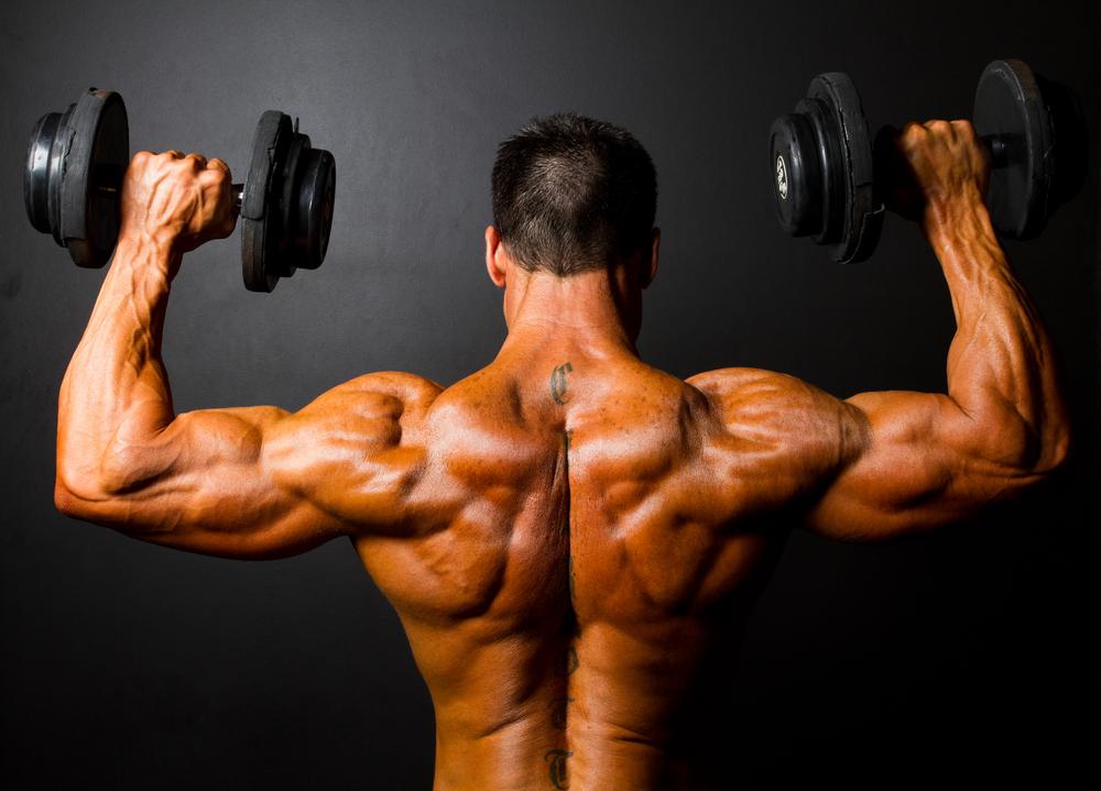 Hanteln Gewichte