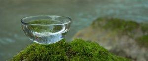 glas wasser auf grünem stein symbolbild entschlacken