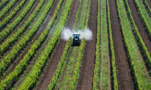 traktor versprüht pestizide auf feld
